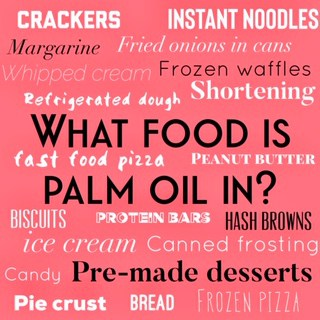 What food is palm oil in?