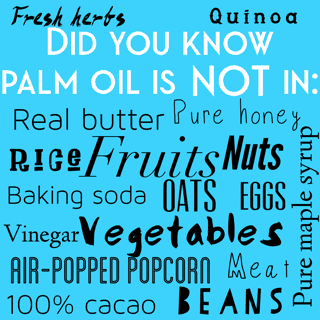what doesn't contain palm oil