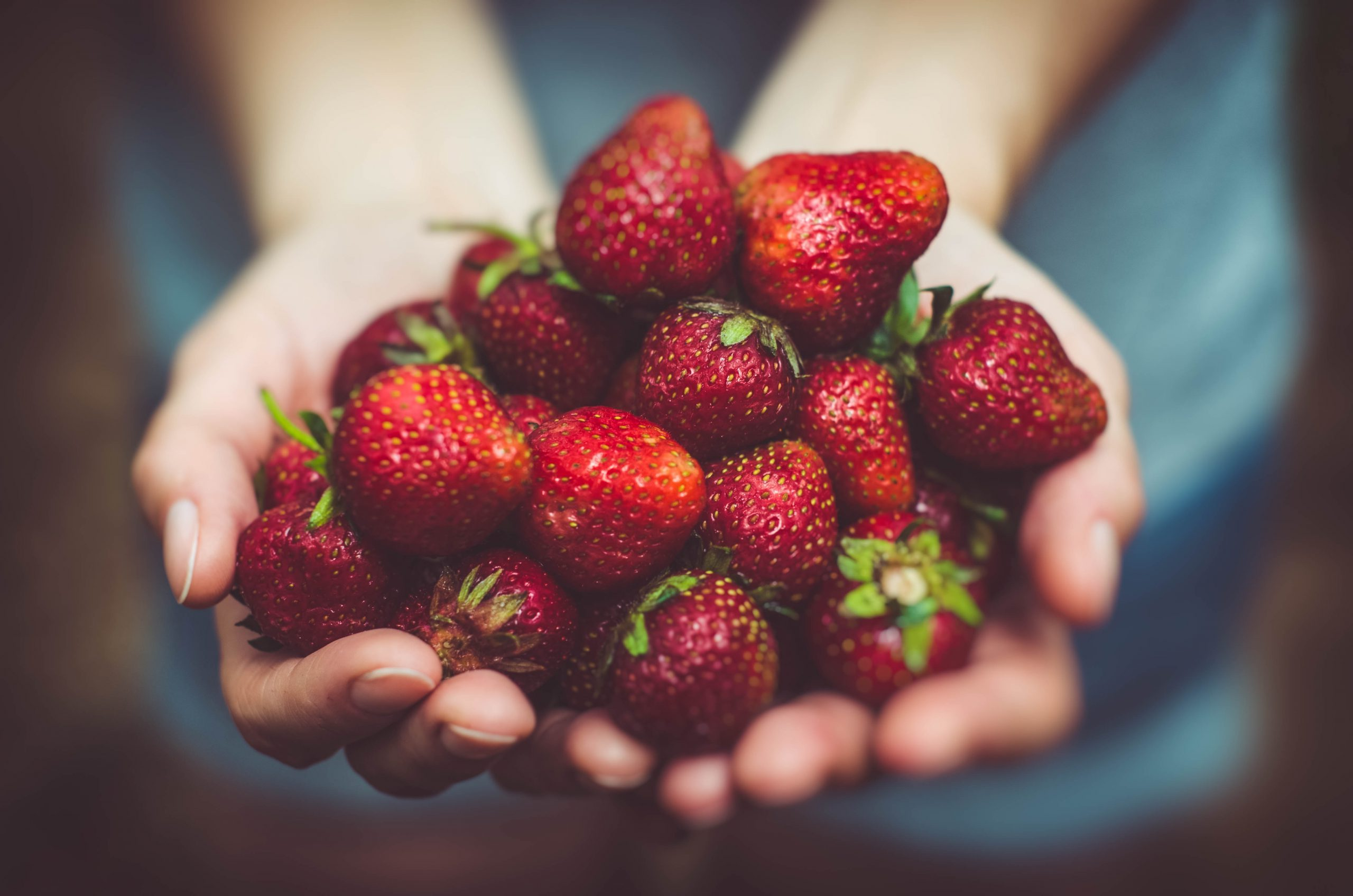 fresh strawberries for strawberry compote